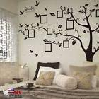 Family Tree Wall Decal Sticker Large Vinyl Photo Picture Fra
